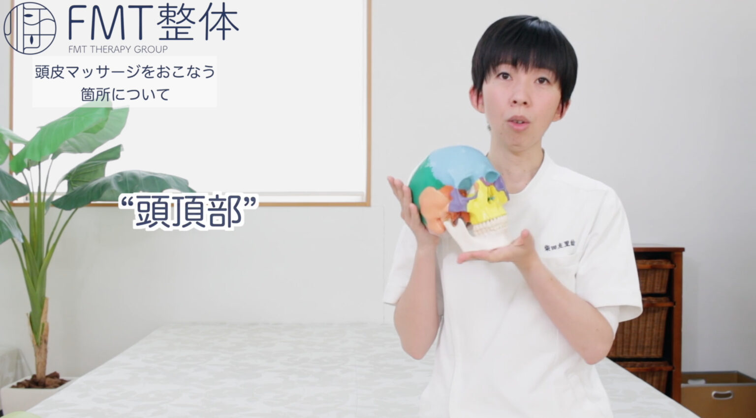 DVD理論編